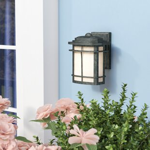 Womack 1-Light Outdoor Wall Lantern by Three Posts