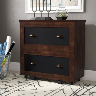 Zakhar 2-Drawer Lateral Filing Cabinet by 17 Stories Comparison