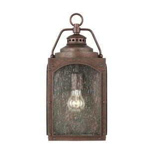 Williston Forge Newlon Outdoor Wall Lantern
