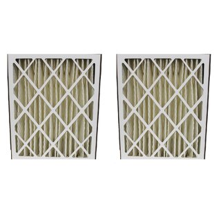 Pleated Furnace Air Filter (Set of 2)