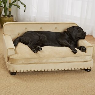 Pet Furniture Youll Love Wayfair