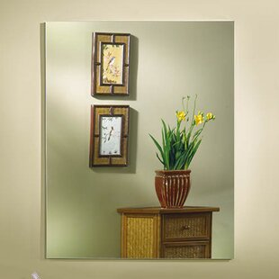 Brendon 20 x 25 Recessed or Surface Mount Medicine Cabinet