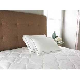 Read Reviews IsoCool Memory Foam Standard Pillow ByCarpenter Co.
