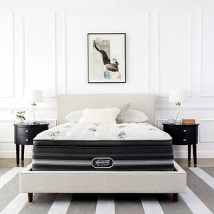 Beautyrest Black Desiree 13