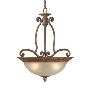 Fleur De Lis Living Bouknight 4-Light Bowl Pendant