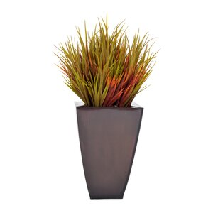 Artificial Grass in Planter