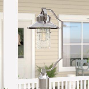 Tolliver 1-Light Lantern Head by Beachcrest Home