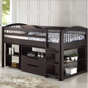 Abigail Twin Loft Bed with Desk and Storage