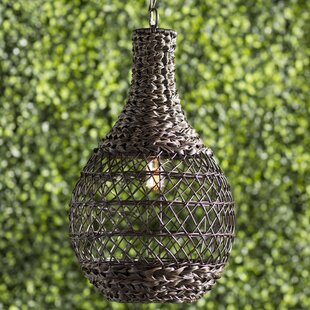 Online Reviews Durrant 1-Light Outdoor Pendant By Mistana