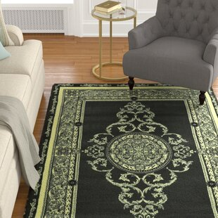 Price comparison Srouder Green/Black Area Rug By Astoria Grand