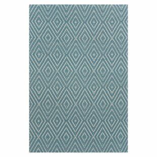 Hand Woven Blue Indoor/Outdoor Area Rug