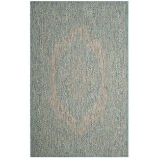 Myers Gray/Aqua Indoor/Outdoor Area Rug