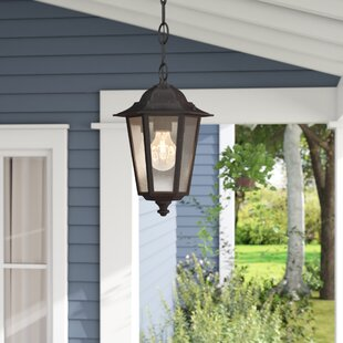 Bargain Mayer 1-Light Outdoor Hanging Lantern By Alcott Hill