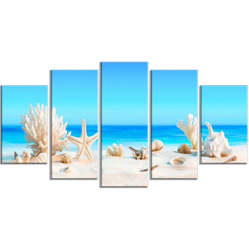 Highland Dunes Seashells On Tropical Beach 5 Piece Wall Art On Wrapped Canvas Set Reviews Wayfair