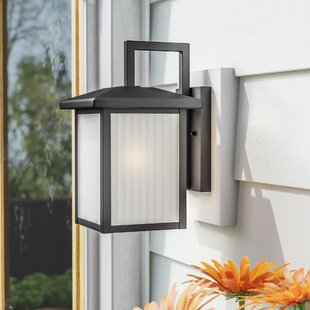 Cherryville 1-Light Outdoor Wall Lantern