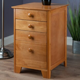 Hilderbrand 4-Drawer Home Office File Cabinet by Red Barrel Studio