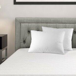 Adela Super Plush Down Alternative Pillow (Set Of 2) by Alwyn Home 2019 Sale