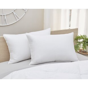Alwyn Home Down Pillow with Stitched Edges