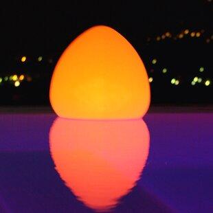 Infinita Corporation Smart Poolside and Floating Light