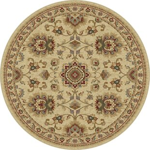 Clarence Ivory Area Rug by Astoria Grand