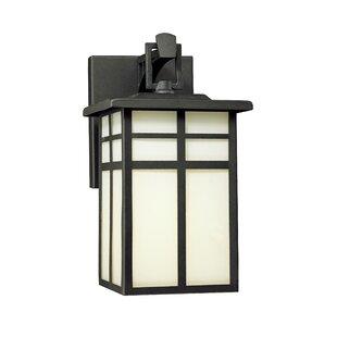 World Menagerie Bonfield1-Light Outdoor Wall Lantern
