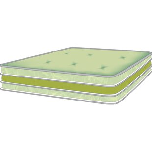Affordable Isis 8 Soybean Foam Futon Mattress by The Futon Shop Reviews (2019) & Buyer's Guide