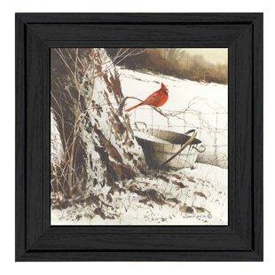 Winter Cardinal Pictures Wayfair