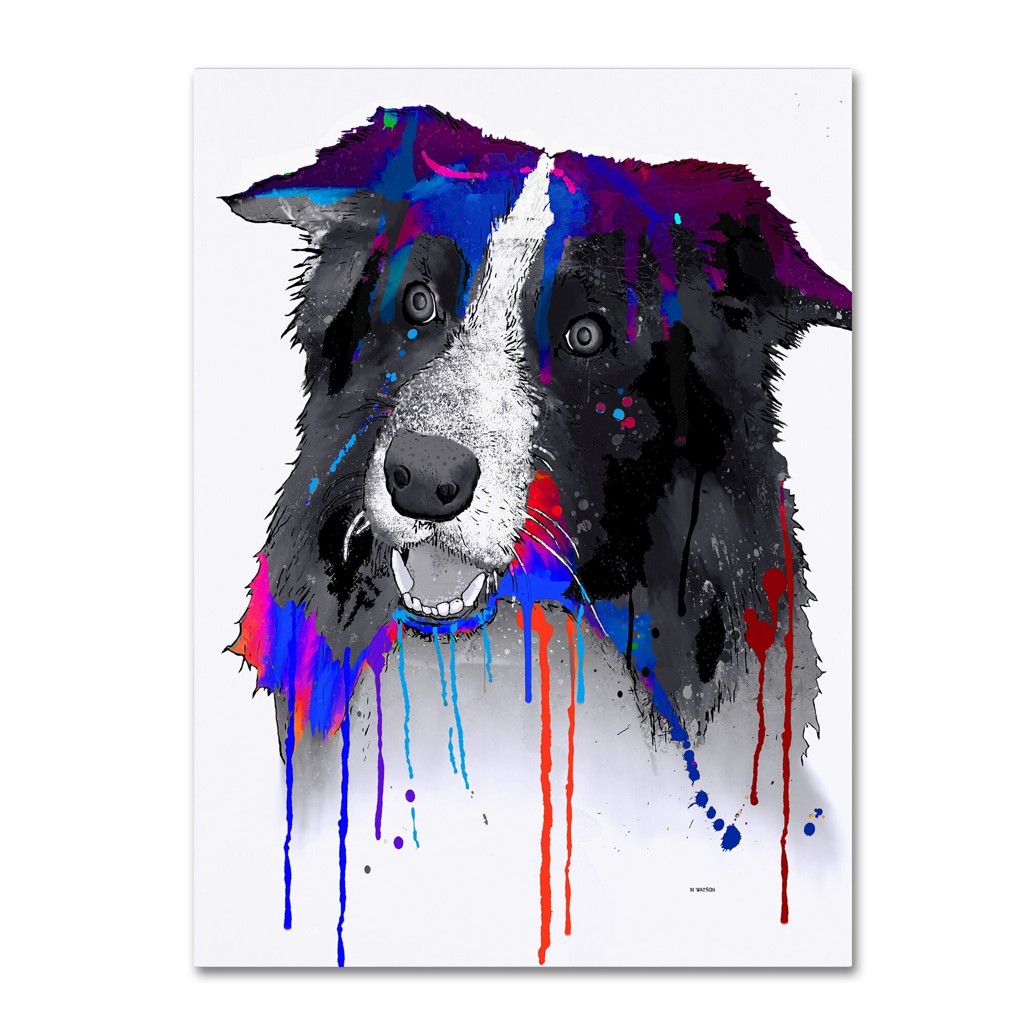 Trademark Art Border Collie Painting Print On Wrapped Canvas Wayfair