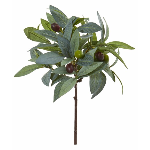 Artificial Olive Branches Wayfair Ca