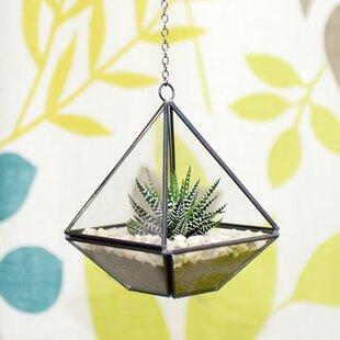 Diamond Glass Terrarium By Freeport Park