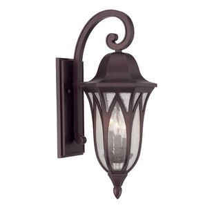 Reviews Besaw 3-Light Outdoor Wall Lantern By Fleur De Lis Living