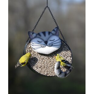 Gift Essentials Bird Feeders You Ll Love In 2021 Wayfair