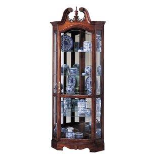 Bridgeman Curio Cabinet by Darby Home Co