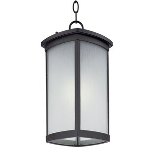Reviews Fielden 1-Light Outdoor Hanging Lantern By Latitude Run