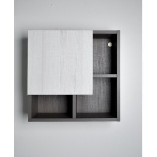 Laverriere 197 W x 197 H Surface Mount Frameless Medicine Cabinet with 4 Shelves by Ivy Bronx