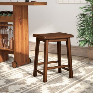 Colberta 24 Bar Stool (Set of 2) by Birch Lane™