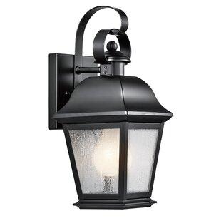 Big Save Darrah Traditional 1-Light Glass Shade Outdoor Wall Lantern By Three Posts