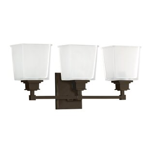 Darby Home Co Eldorado 3-Light Vanity Light