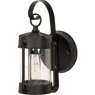 Socotrine Outdoor Sconce