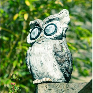 Rema Owl Statue By Sol 72 Outdoor