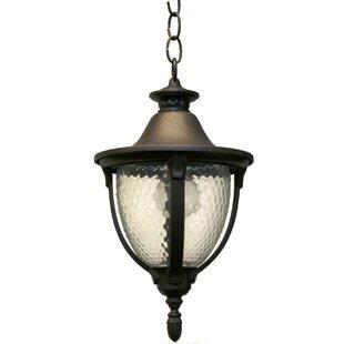 Alcott Hill Phillipstown 1-Light Outdoor Pendant