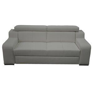 Hume Sleeper Sofa by Latitude Run