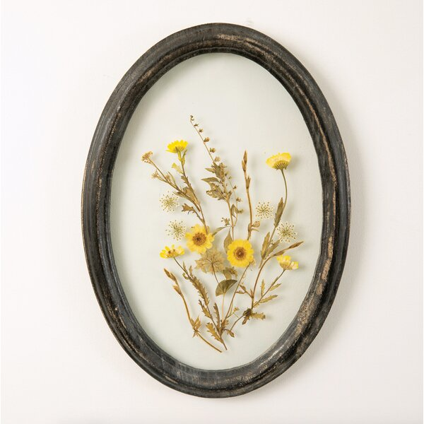 Oval Wall Decor Wayfair