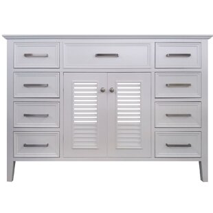 Ferree 49 Single Bathroom Vanity Base by Highland Dunes