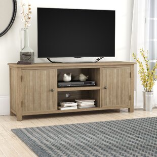Big Save Asuncion TV Stand for TVs up to 60 by Lark Manor Reviews (2019) & Buyer's Guide