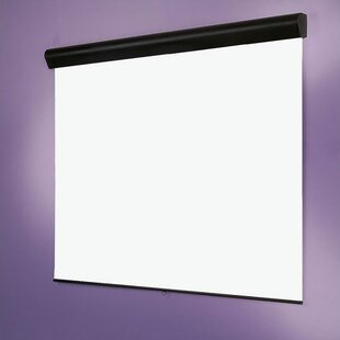 White Manual Projector Screen