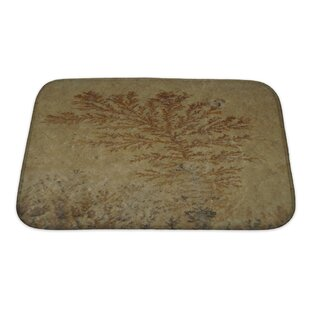Bravo Close Up Of Fossil Ferns Petrified In A Stone Slab Bath Rug by Gear New New Design
