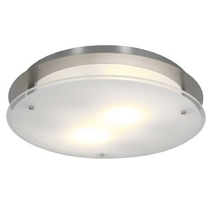 Ivy Bronx Retha 2-Light Outdoor Flush Mount
