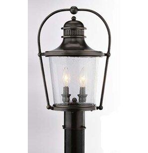 Darby Home Co Theodore 2-Light Lantern Head in Bronze
