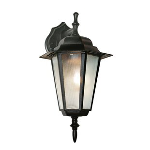 1-Light Outdoor Wall Lantern By TransGlobe Lighting Outdoor Lighting